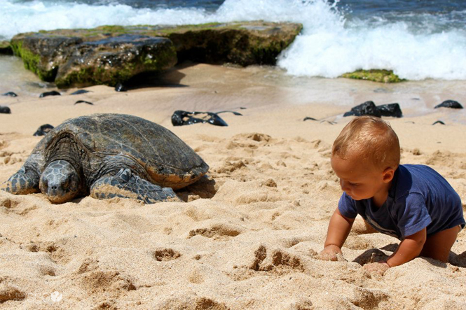 Maui Musts 40 Must See Spots on Maui (3)