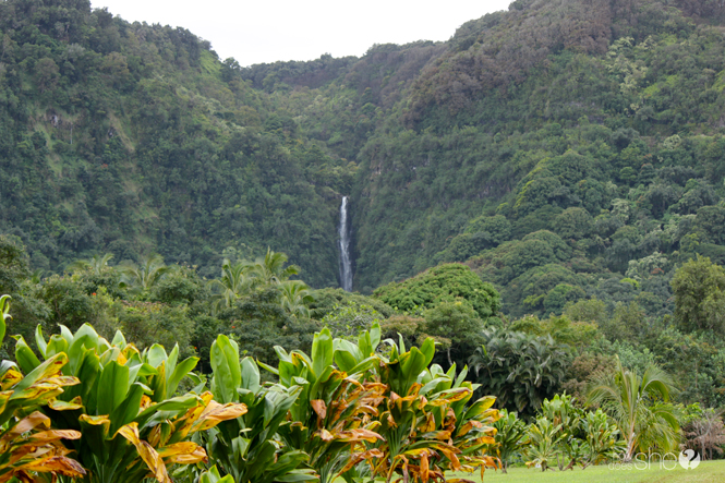 Maui Musts 40 Must See Spots on Maui (7)