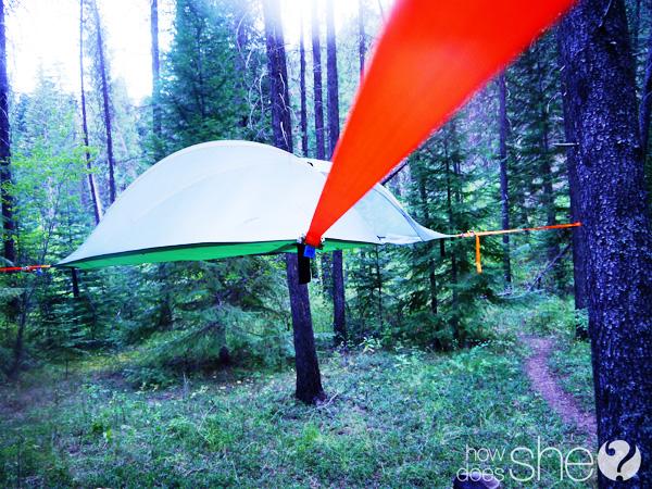 tent strap