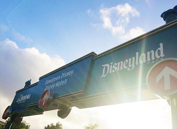 Disneyland in 2017
