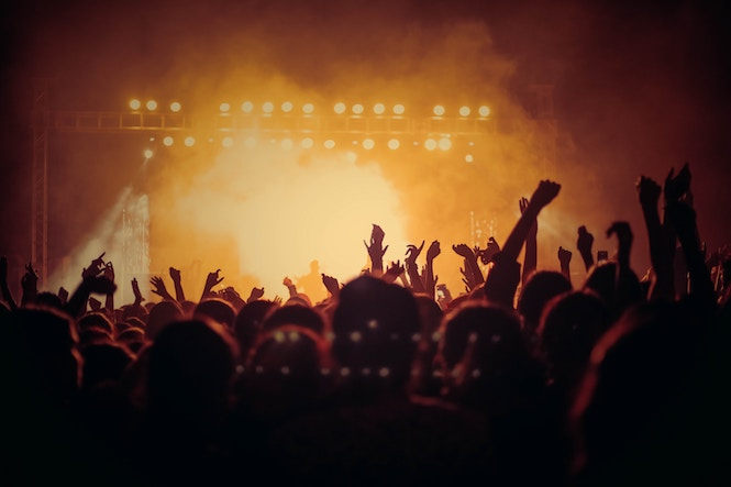 The 5 People You Meet at Concerts