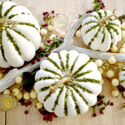 Fancy Farmgirls DIY Moss Pumpkins