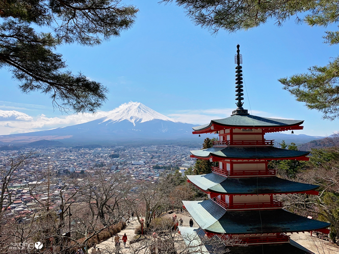 Japan Travel Temples