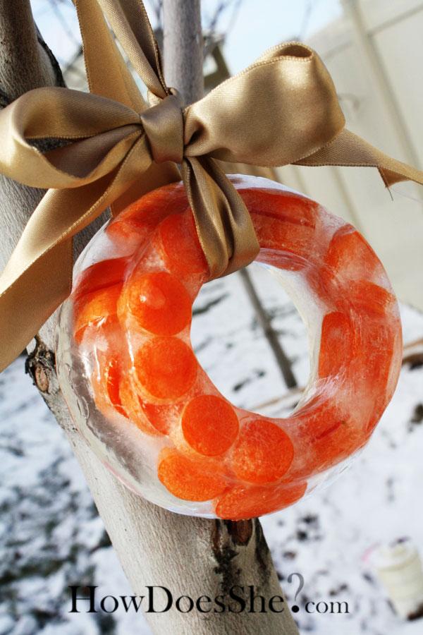 Reindeer Ice Wreath