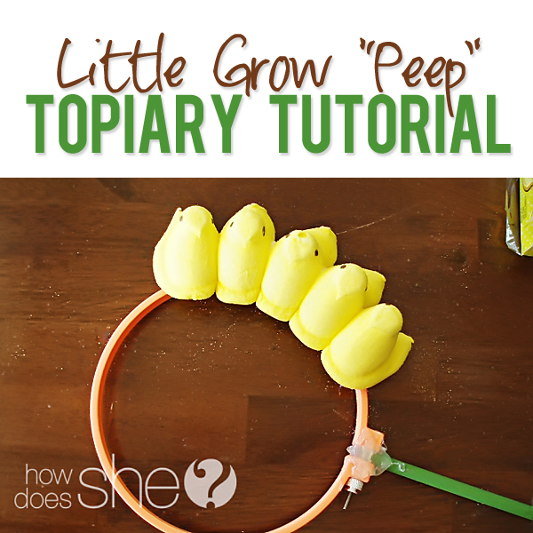 Little Grow Peep Topiary Tutorial