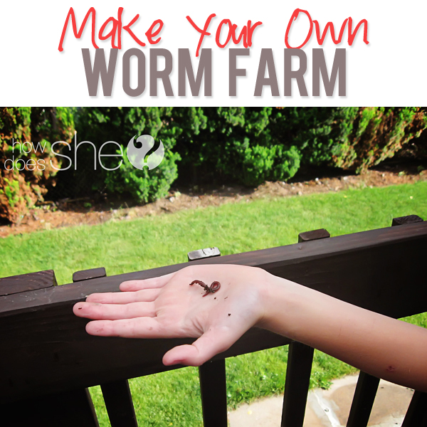 Make Your Own Worm Farm