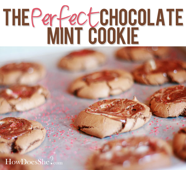 The Perfect Chocolate Mint Cookie