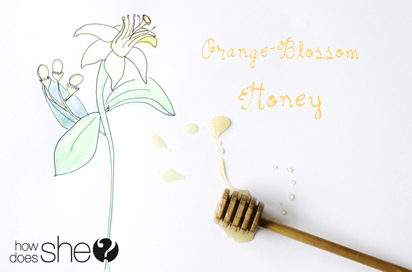 orange honey steel cut oats