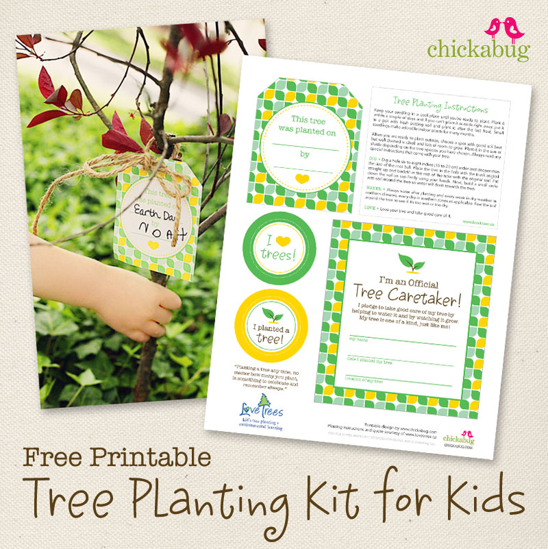 tree planting kit