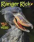 rangerrick