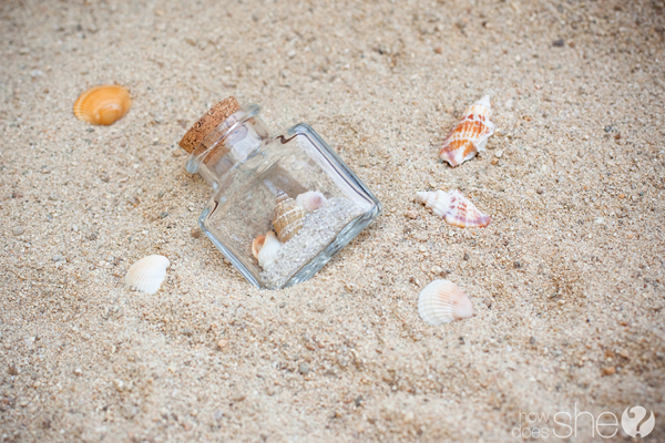 Seashells in a jar
