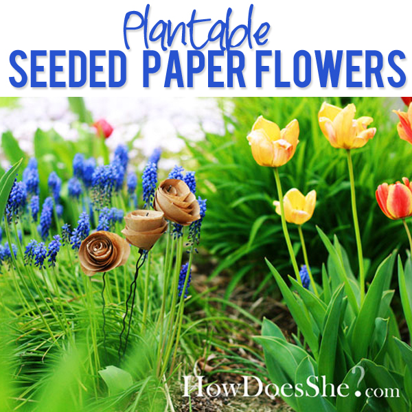 Plantable Seeded Paper Flowers