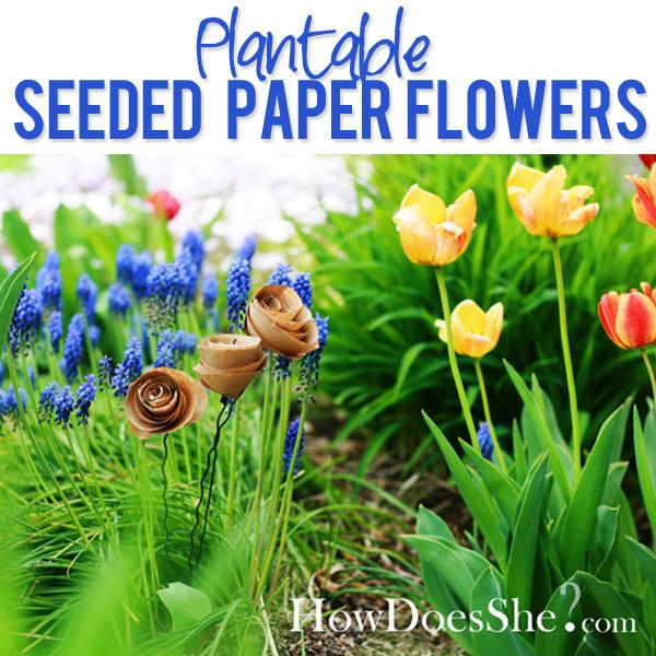 Plantable seeded paper flowers mightylinksfo